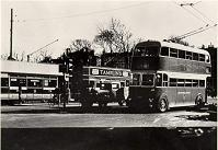 Trams and Trolley Bus at the Old Steine